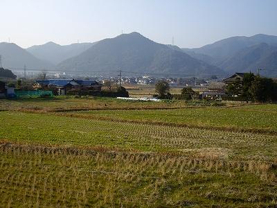 山野20090207