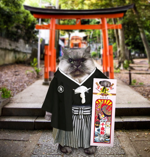 kai 袴