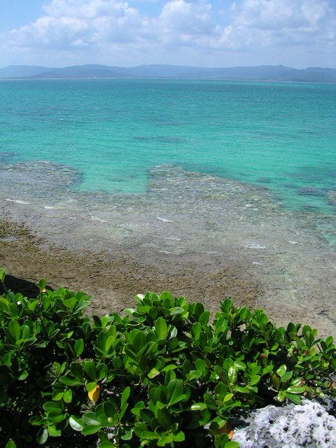 八重山の海