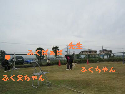 IMG_0047-1