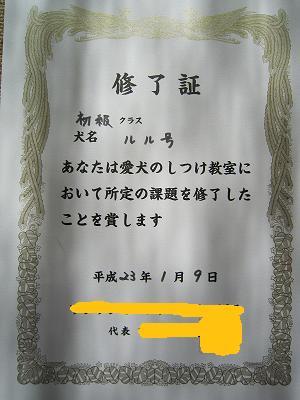 IMG_0183-1.jpg