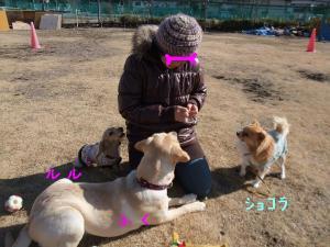 j118_convert_20110113143316.jpg