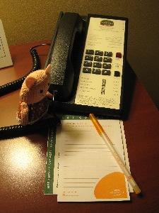 ココトンちゃん、トンコに電話をかけようとしてる・・・・