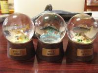 琵琶湖の生き物ウォータードーム