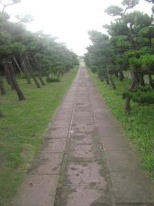公園のまっすぐな道