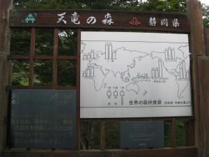 世界の森林資源