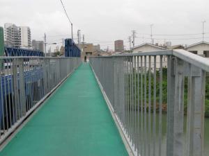 橋、生き物用