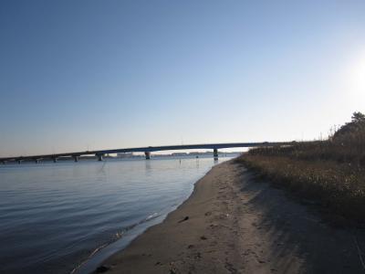 橋と浜名湖