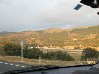 伊豆の山中