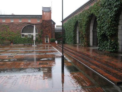 雨のアイビースクエア