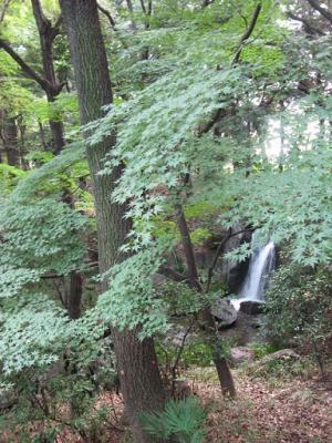 怡和園 滝