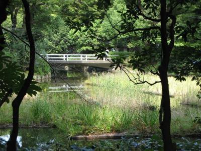 怡和園 池