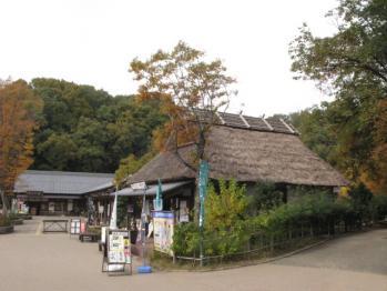 道の駅『昭和村』