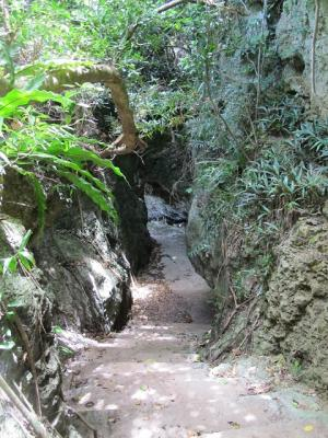 石垣島サビチ洞