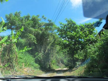 南島焼さんへの道