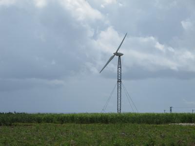 可倒式風車
