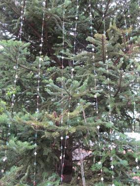 宝石の木?
