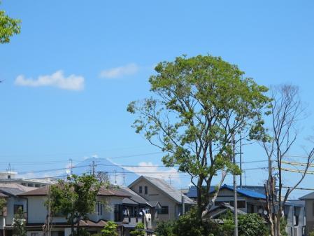 芹沢介美術館付近より富士山を望む