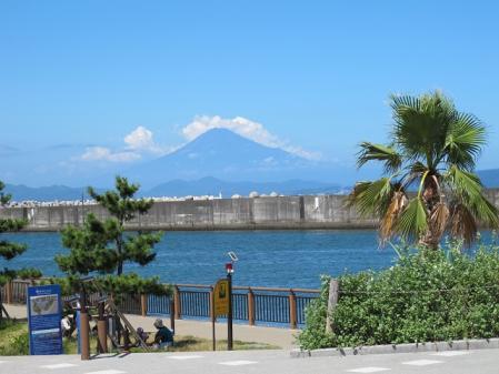 焼津から富士山