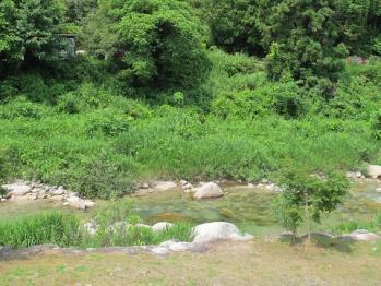 妻籠宿近く川