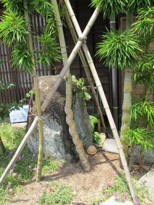 夏の妻籠宿 亀甲竹
