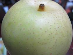 食べごろの二十世紀梨