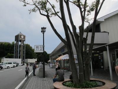 日本平P.A