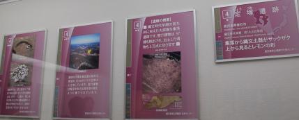 (4)縄文時代 定塚遺跡