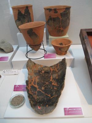 縄文時代 菖蒲崎貝塚