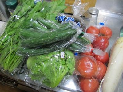 馬籠で買った野菜