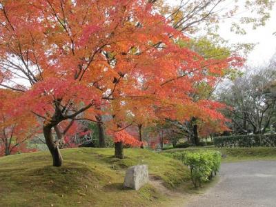 豊田市民藝館