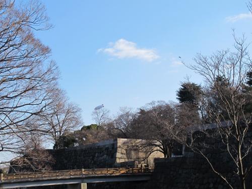 大阪城公園 アリコの飛行船