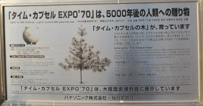 大阪城公園 大阪万博タイムカプセルの木