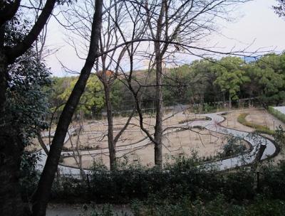 大阪城公園 サーキット
