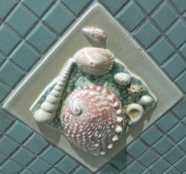 貝殻のタイル