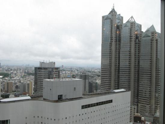 新宿NSビル29階より・・・