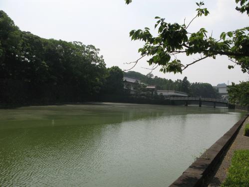 大手濠から平川門へ