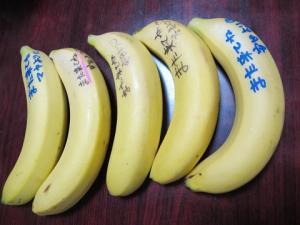 貰ったバナナ