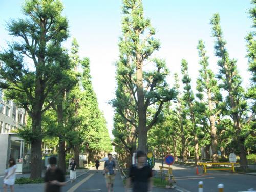 慶応大学日吉校舎