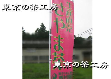 のぼり2010.07