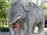 象とaくん