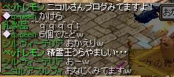 4_20100106045749.jpg