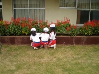 P9170003_convert_20090918110616.jpg