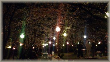 4.6 夜桜バーベキュー