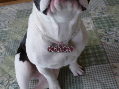 kanon0220-2