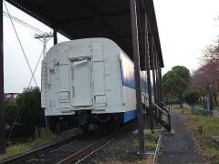 P1020618.jpg