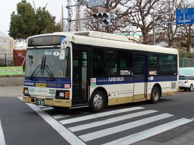DSC01301-m.jpg