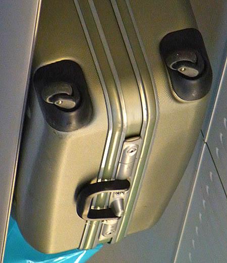 100812スーツケースパンダ