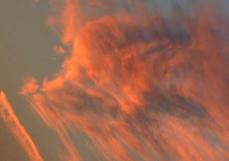 101107ゴールデンレトリバー雲