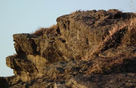 110213ハイエナ岩1